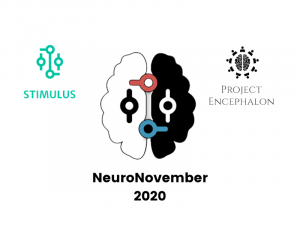 Organising the NeuroNovember Convention 2020